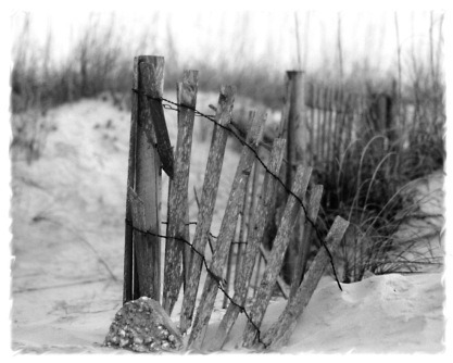 sandy fence BW
