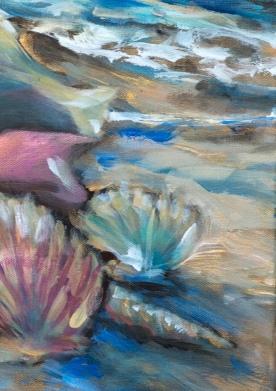 Shells at Tide detail