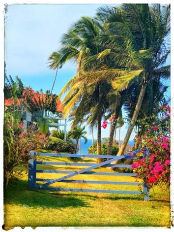 Saint Kitts 2018