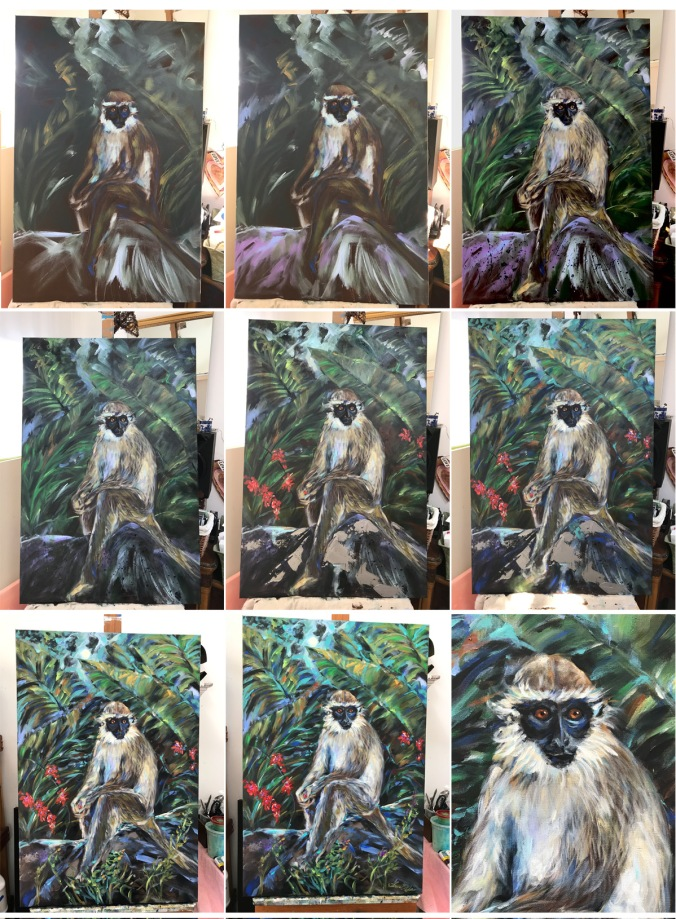 Monkey progress