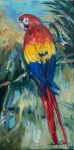 Parrot Perch 20x10