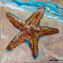Star with tide 8x8