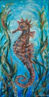 Seahorse D 20x10