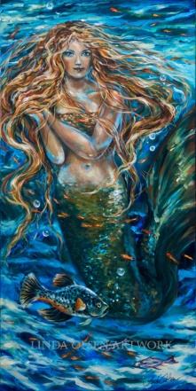reef rhapsody siren 24x48
