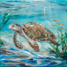 Sea Turtle and kelp 10