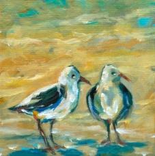 Two gulls 6x6